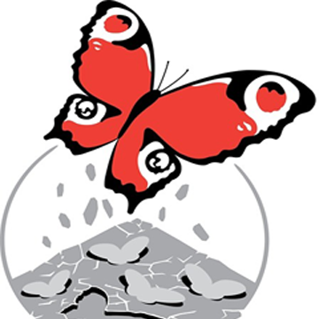 Concrete Butterflies Media Ltd